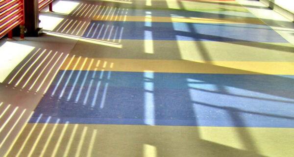 Il Pavimento In Linoleum